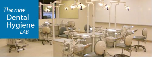 Image of the new dental hygiene simulation lab