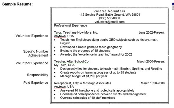 curriculum vitae samples for students. student resume examples.