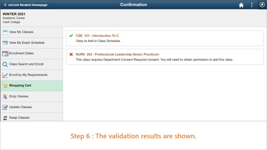 Step 6: The validation results are shown on the page.