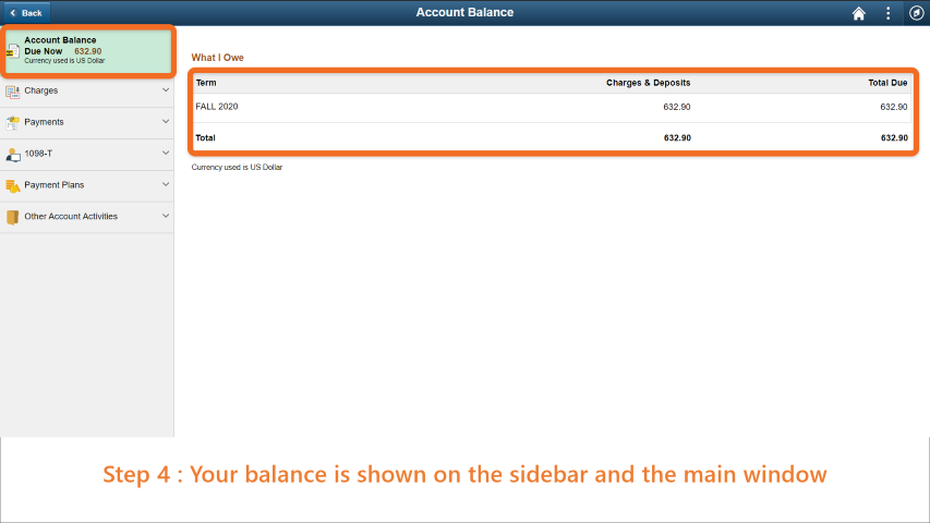 Step 4: Your balance is shown on the sidebar and the main window.