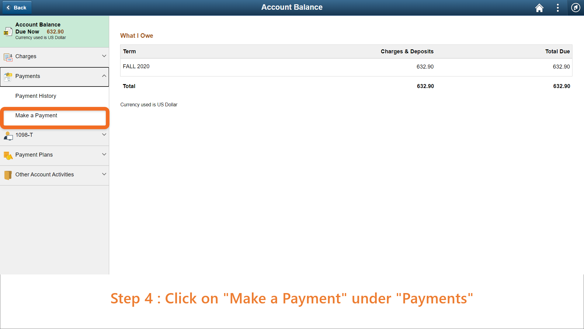 Step 4: Click on 'Make Payments' on the side bar.